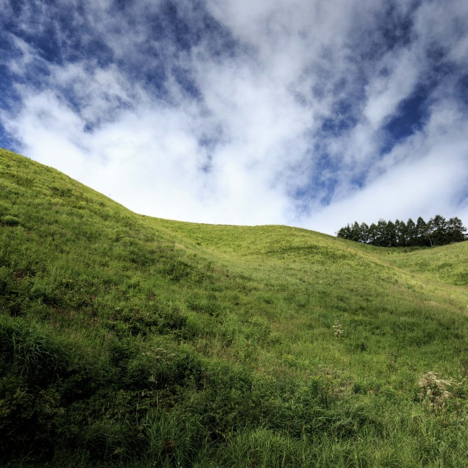 BETWEEN SUMMER AND FALL | 夏と秋の狭間で