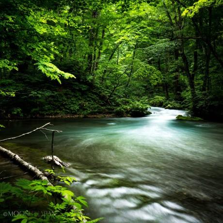 ETERNAL FLOW | 永遠の流れ